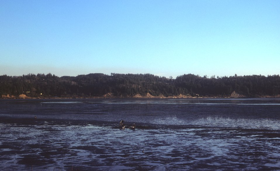 Mud flats and clammers at low tide
