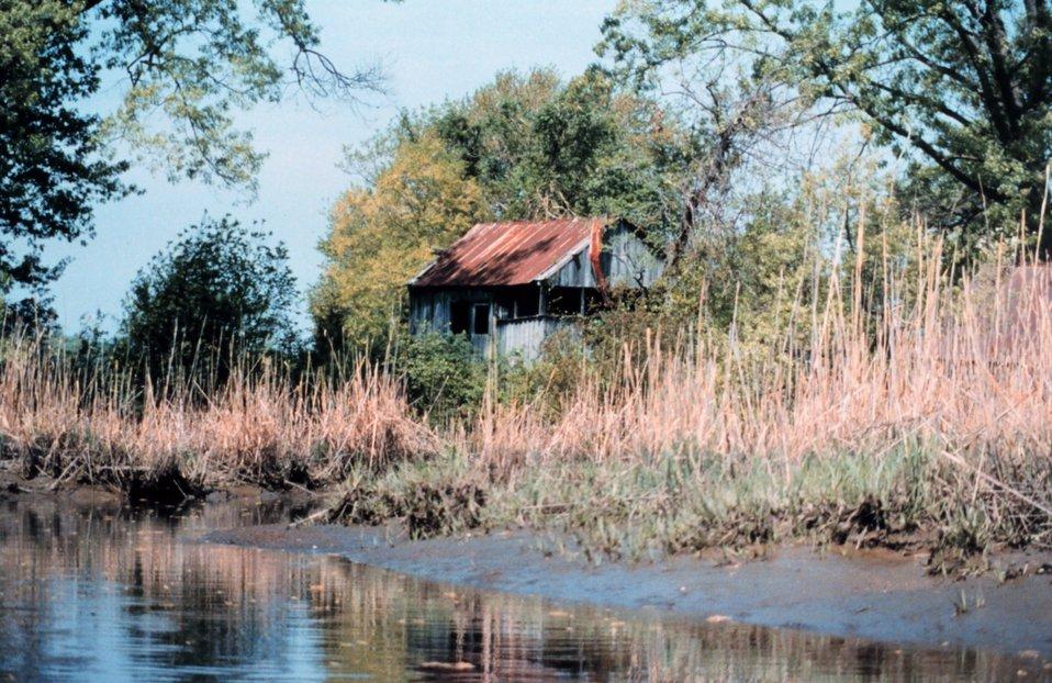 Muddy shoreline next to an abandoned shack