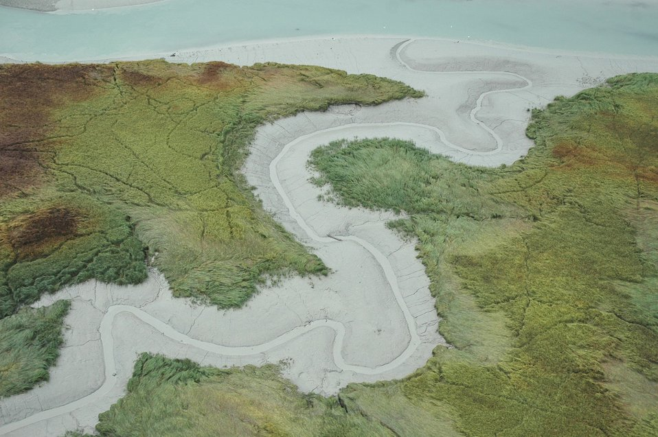 Aerial photograph. A gray mud meandering tidal stream emptying into Taku Inlet.  Curious patterns looking like random trails cover the adjoining grassland.