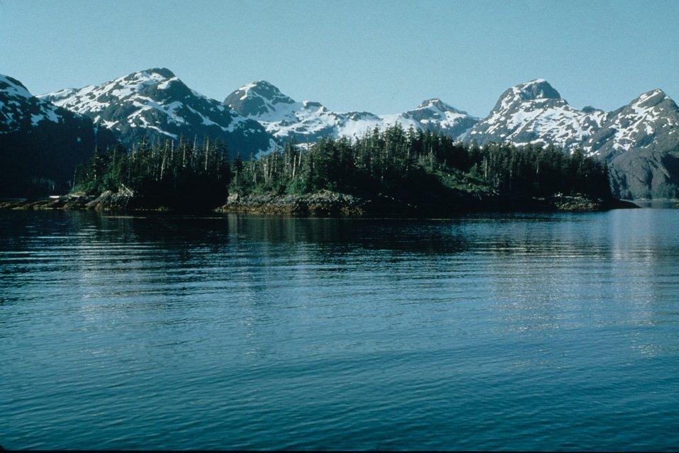Rugged Alaska shoreline