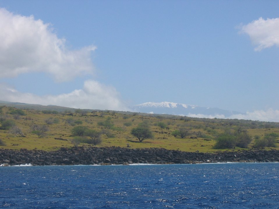 A snow-clad Mauna Kea looms above palm trees and a basaltic shoreline.