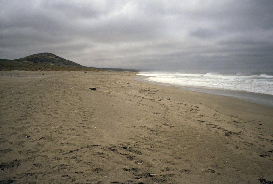 Point Reyes Great Beach