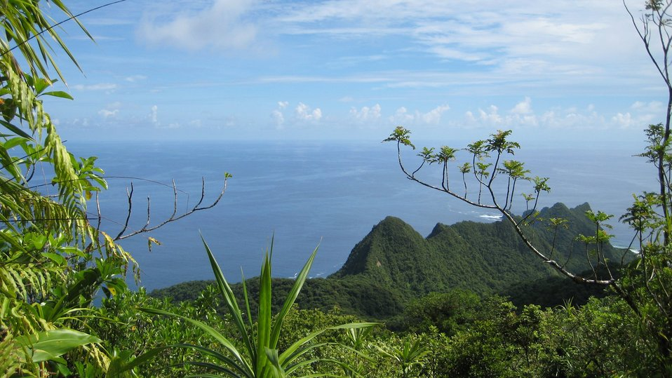 A view over the lush Samoan vegetation to the Pacific Ocean