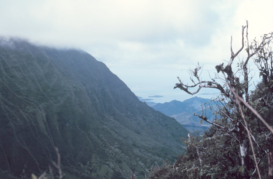Looking down a rugged valley to the sea
