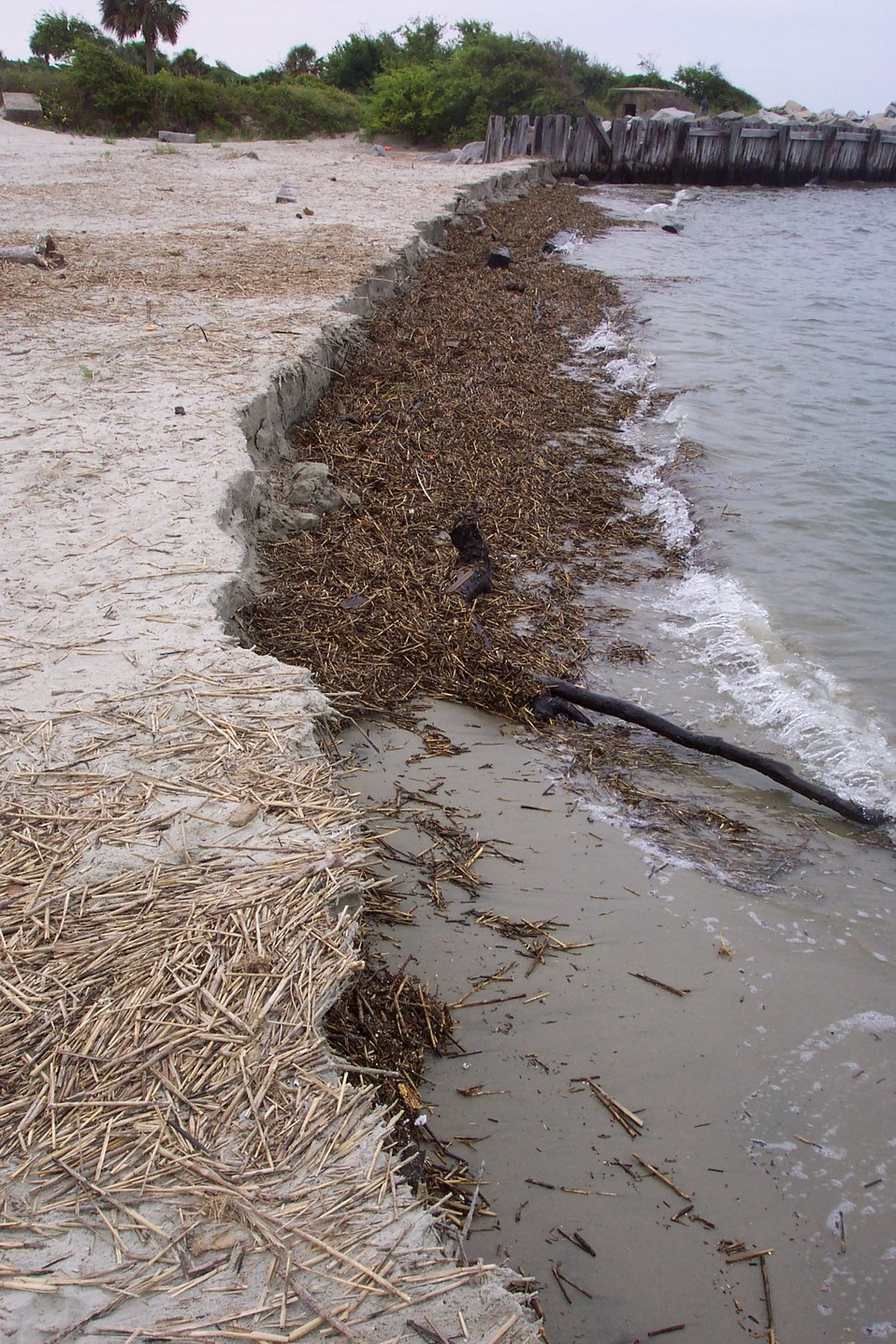 Erosion near Fort Moultrie.