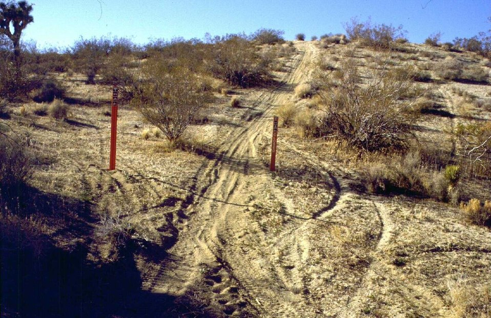 Active trespass route being established around red route closed sign.