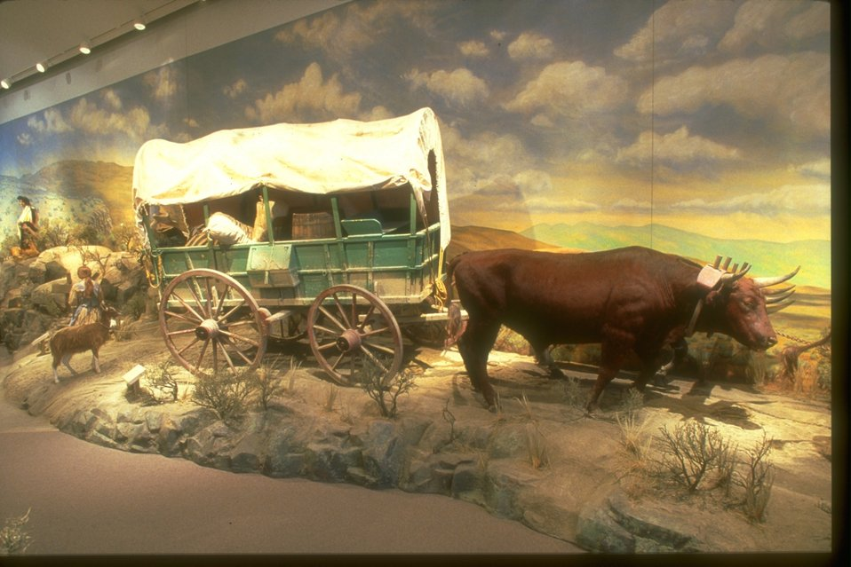 Very full covered wagon being pulled by oxen with a child and a goat following.  On display in the NHOTIC gallery.