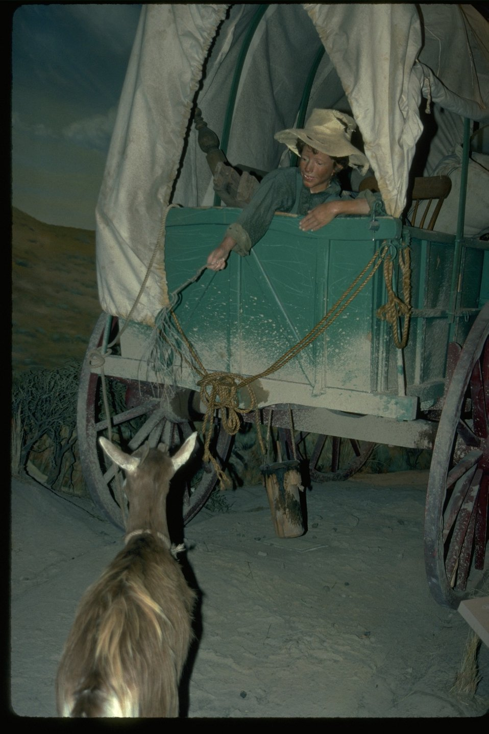 Living history exhibit at the NHOTIC with a child temping a goat to the rear of the wagon.
