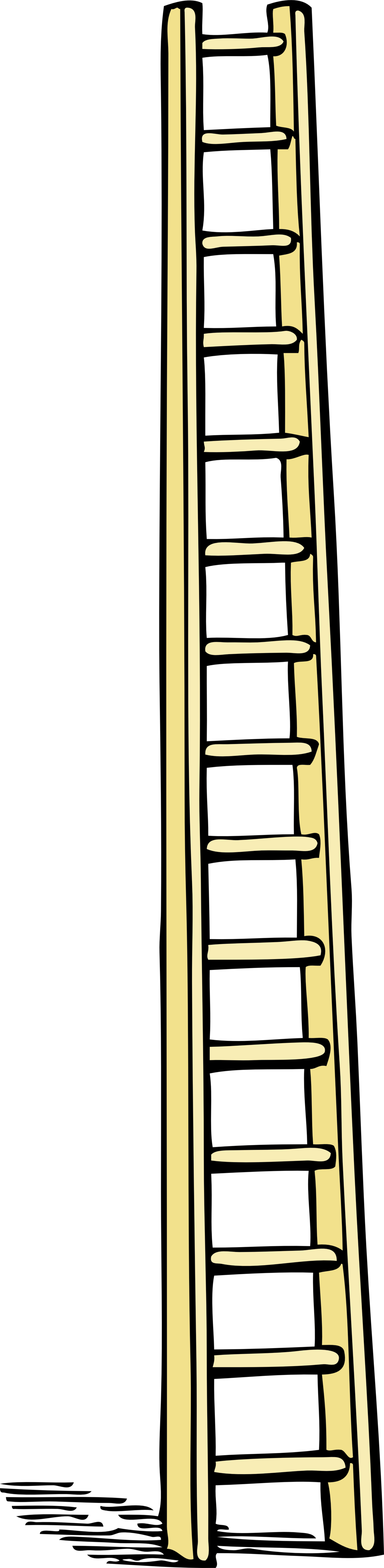 tall ladder