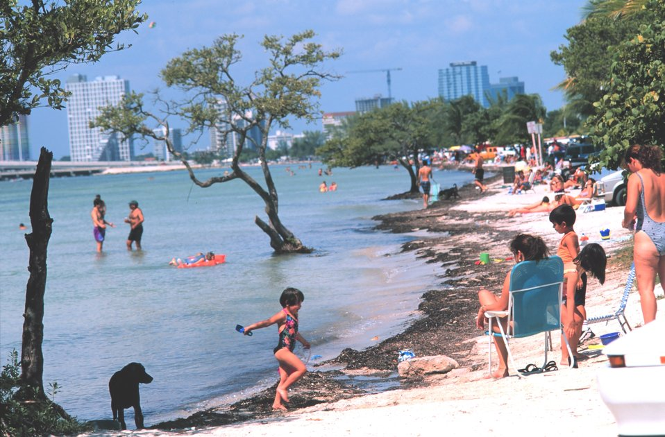 Key Biscayne Beach on the bay side of the island