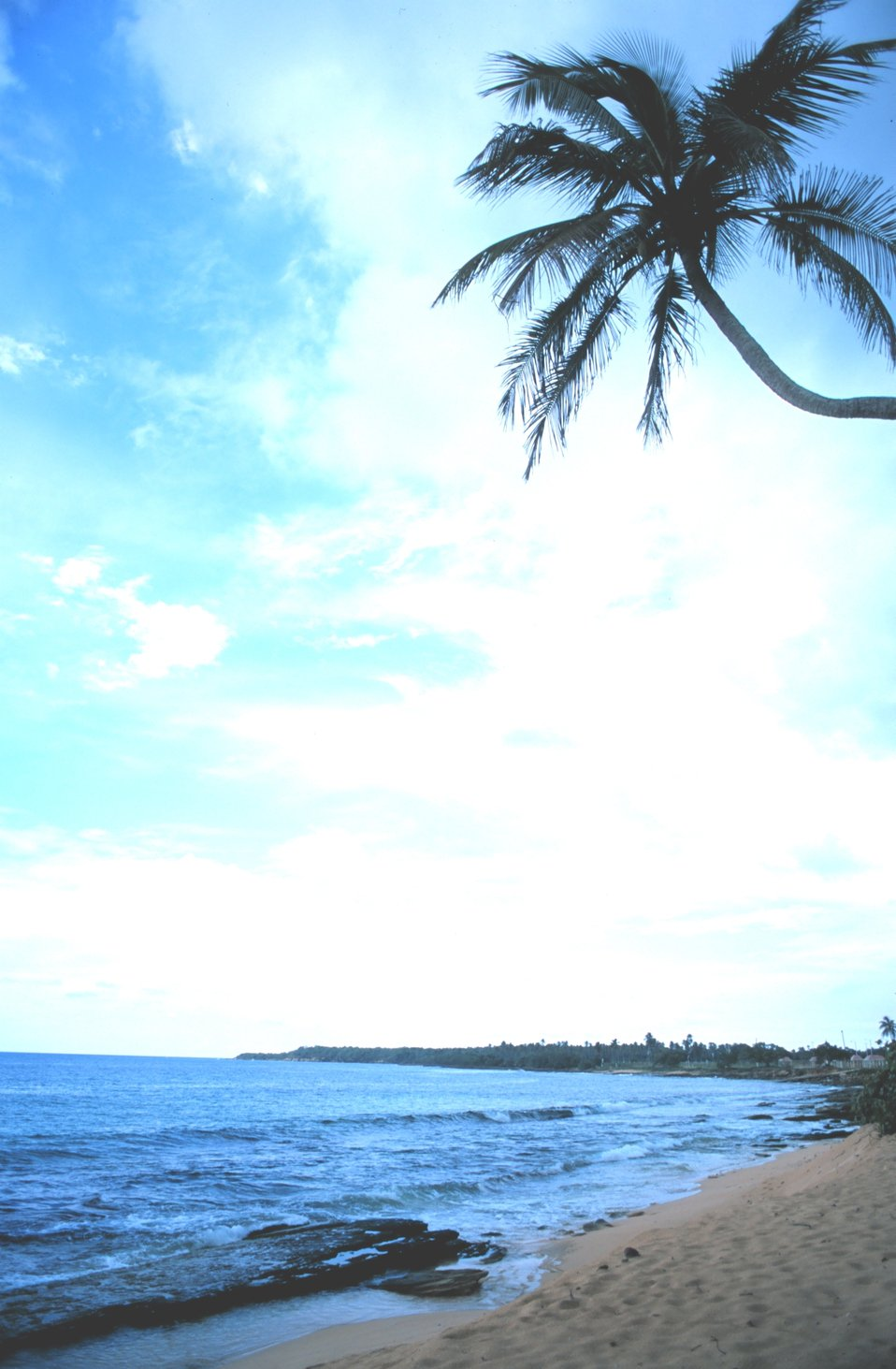 Beach near Puerto Nuevo