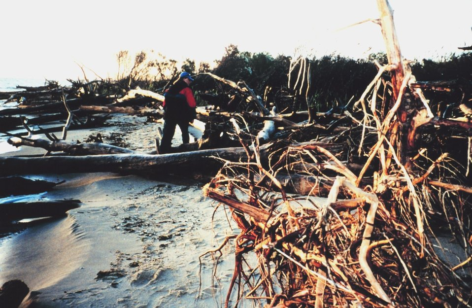 Erosion damage to Port Isobel Island as a result of Hurricane Floyd.
