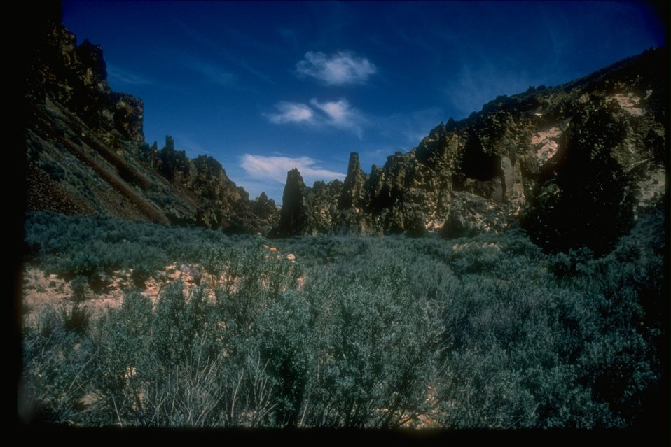Scenic picture of Leslie Gulch, an Area of Critical Environmental Concern.