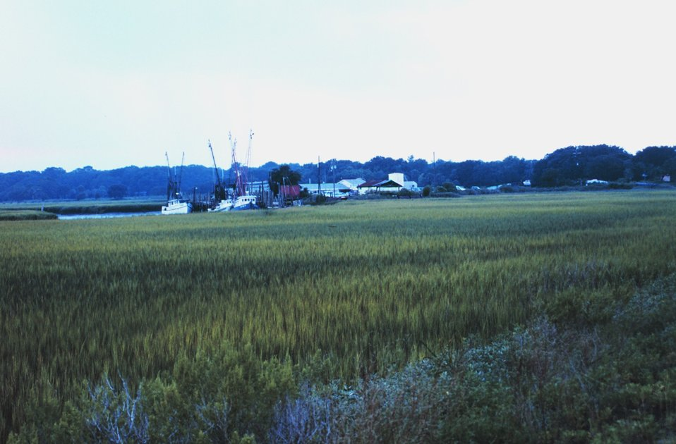 View across marsh of a small fishing village on Route 80
