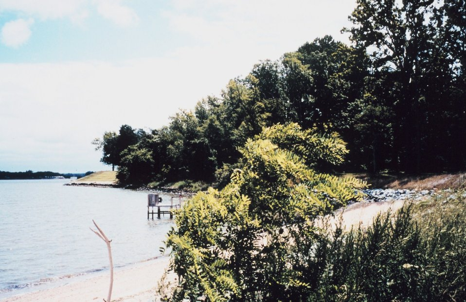 The shoreline at the University of Maryland Horn Point Laboratory is a combination of sandy beach and rock revetment.