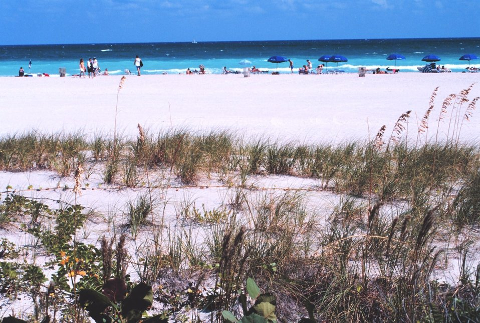 A view of the beach along the Atlantic Ocean