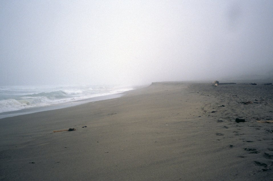 Point Reyes Great Beach.  A misty foggy day.