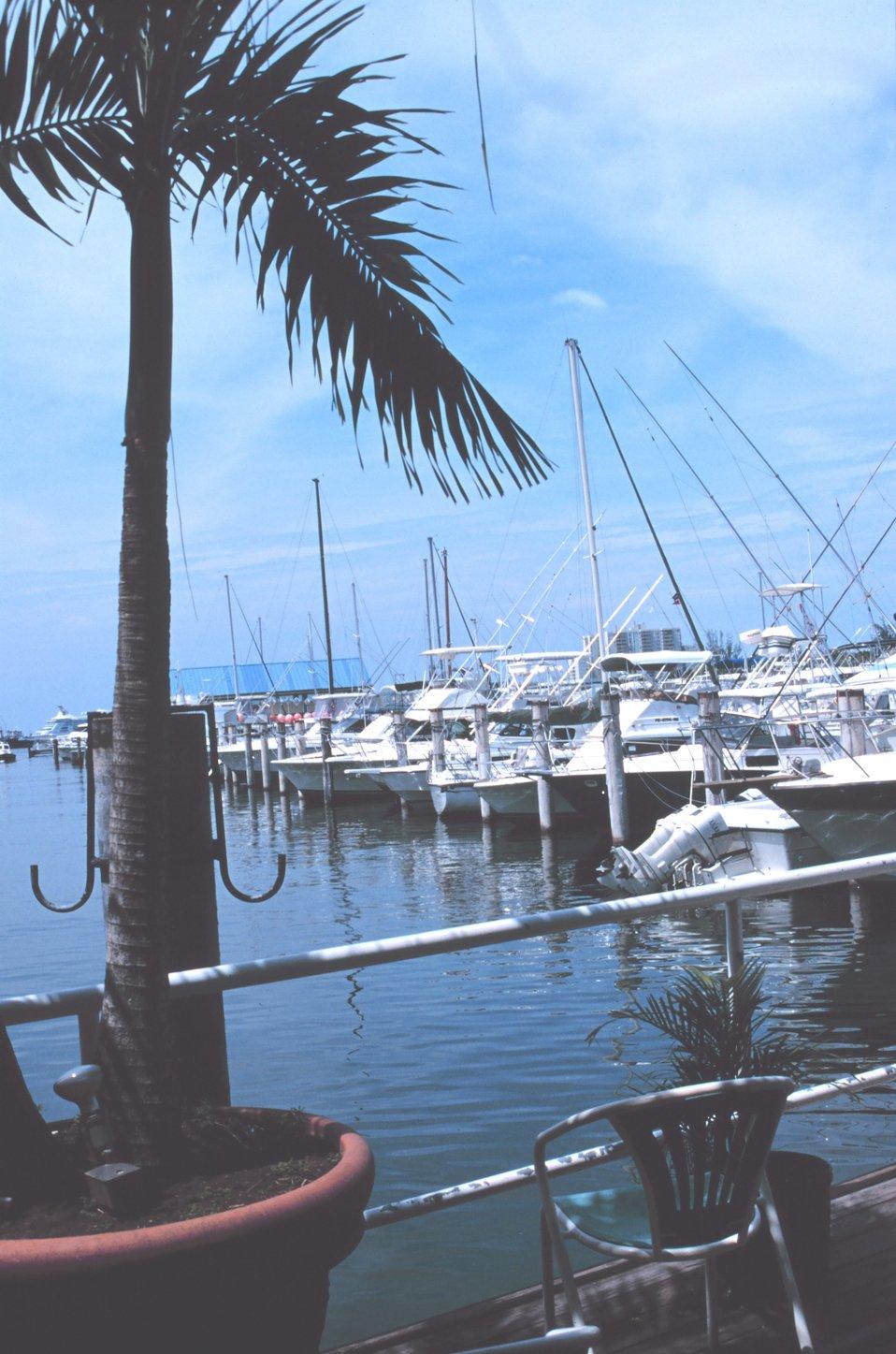 Recreational fishing boats at San Juan Bay Marina
