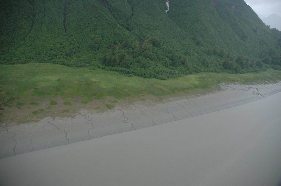Aerial photograph. the continuation of streams running off a steep mountainside into the tidal zone is apparent.  Note the very pronounced meander in the center-right steam.