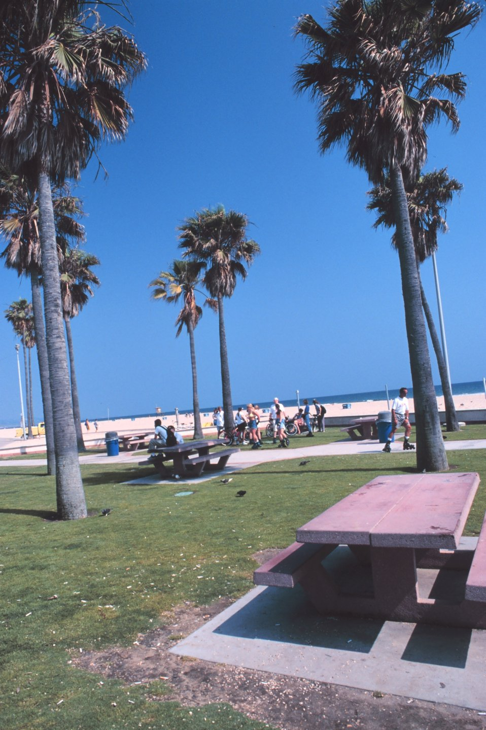 Southern California dreaming - the beach at Newport