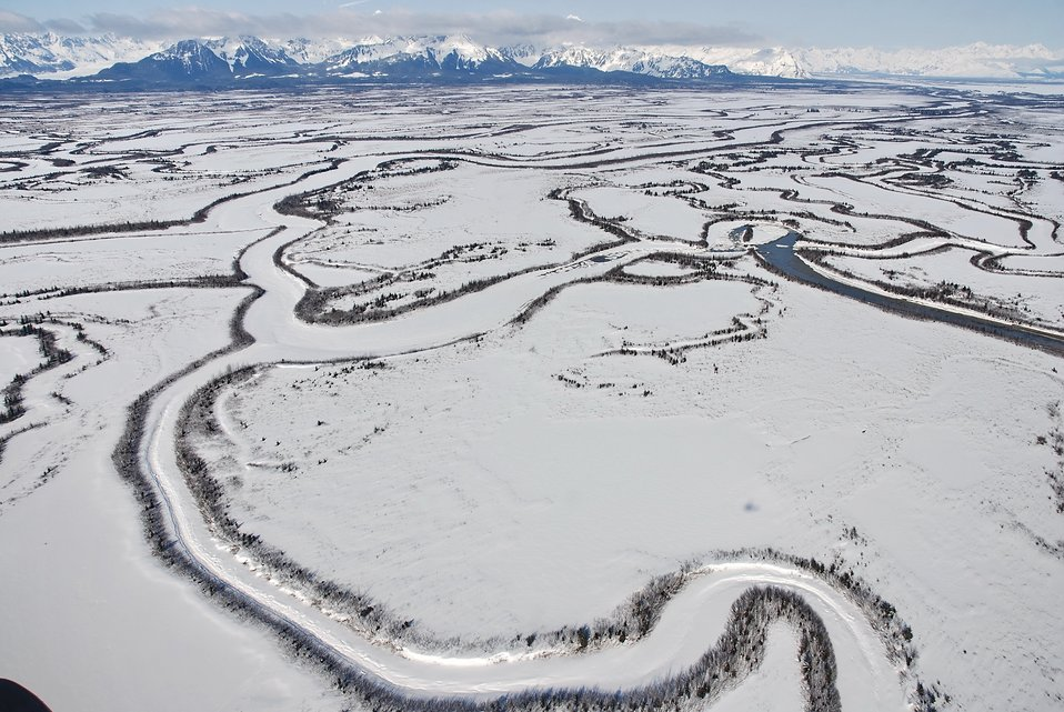 An aerial view of meandering frozen channels of the Copper River reminiscent of Nazca Lines.