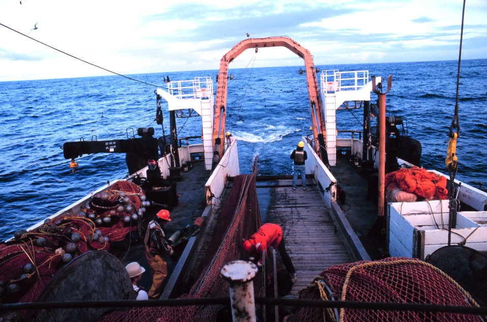 Trawling operations on the MILLER FREEMAN - hauling back the net.