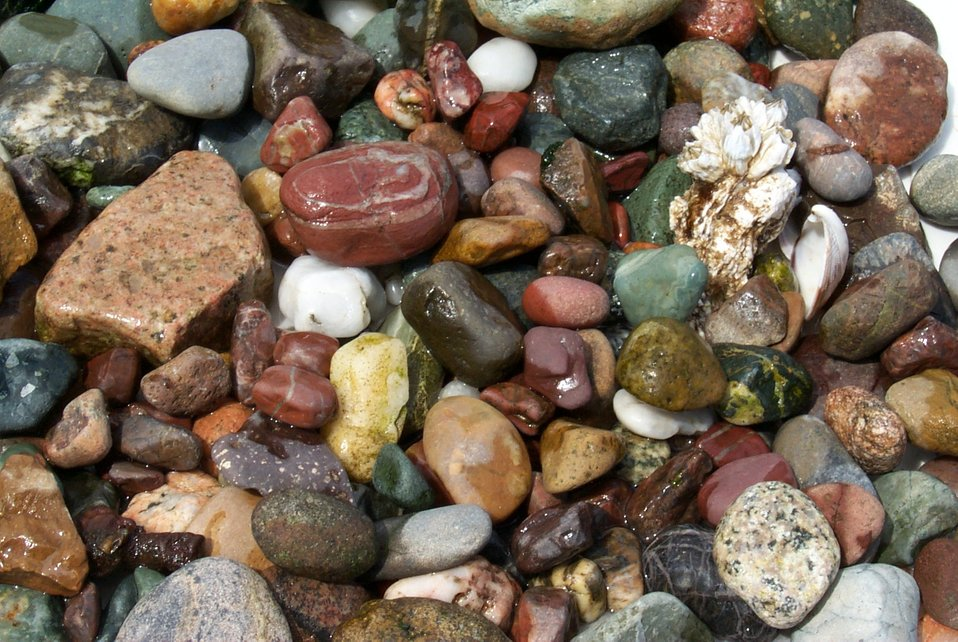 Random rocks and barnacle picked up on the beach at Gig Harbor.