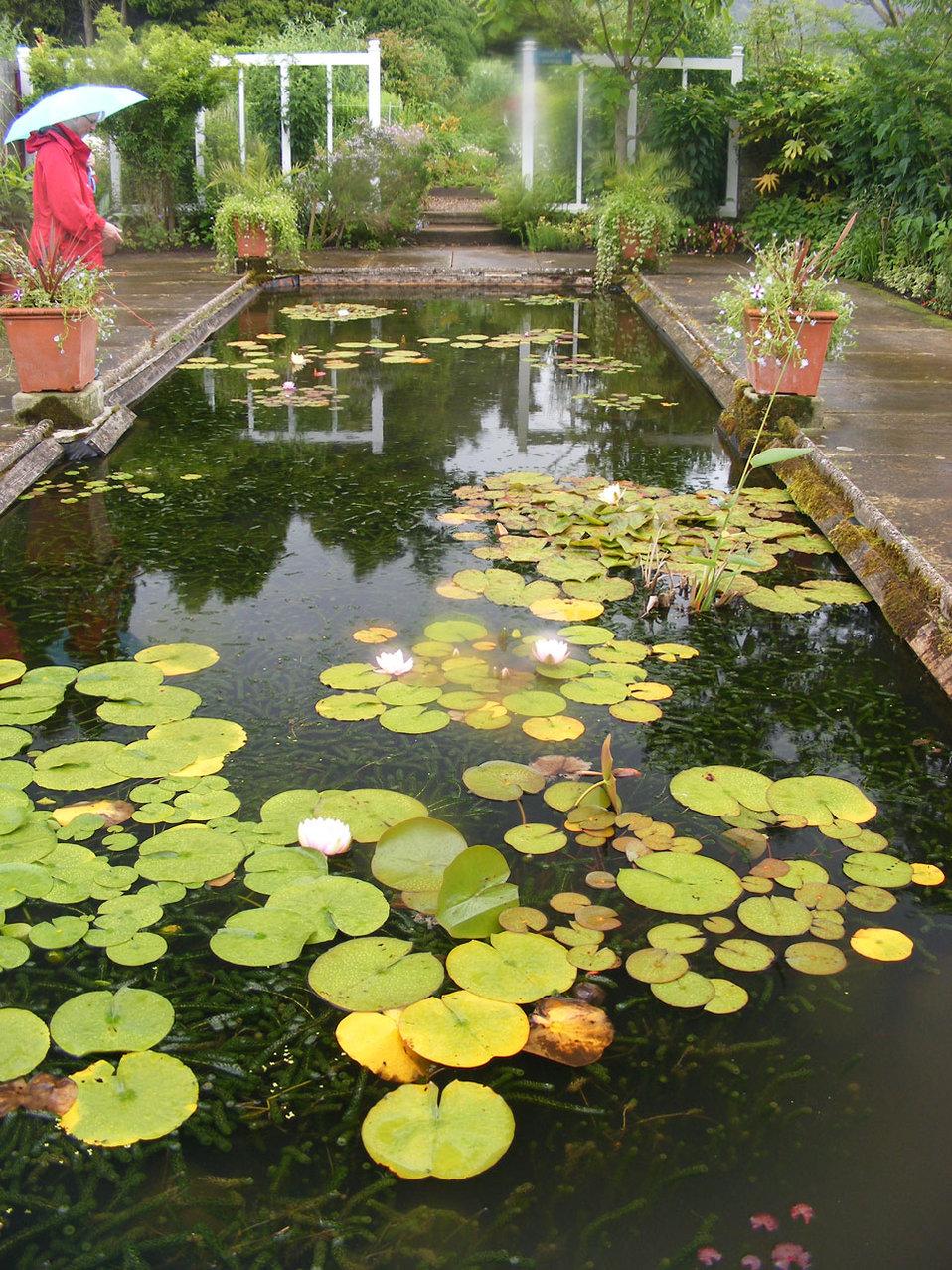 Formal pond