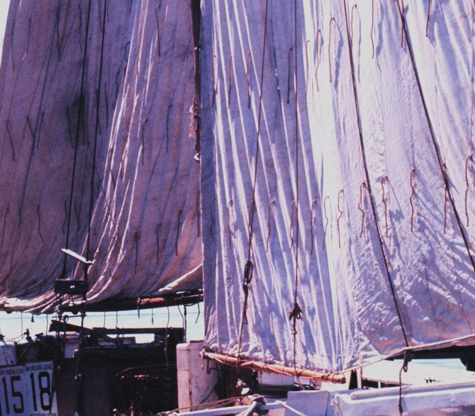 Sailing oyster dredgers drying their sails alongside the dock.