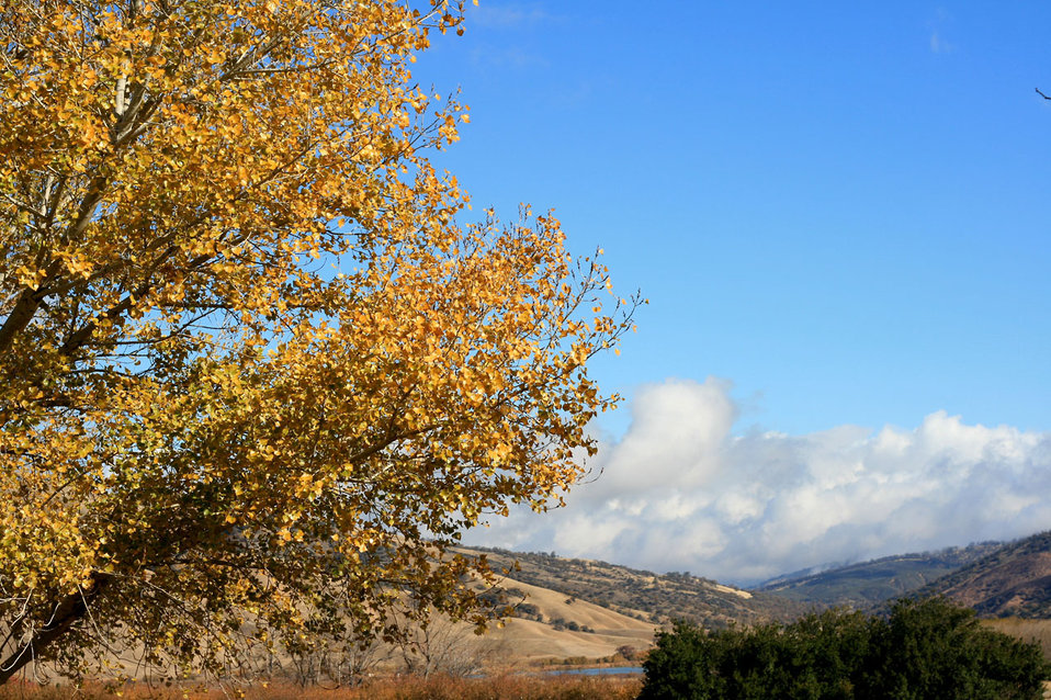 Tejon pass in late autumn