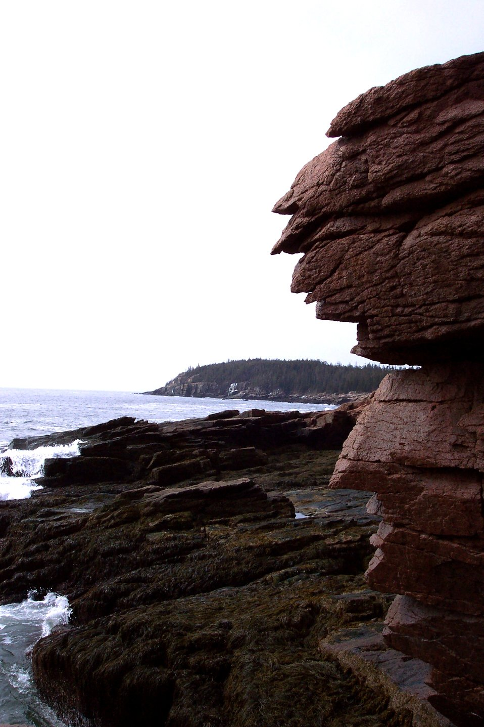 The view towards Otter Cliffs from Thunder Hole.