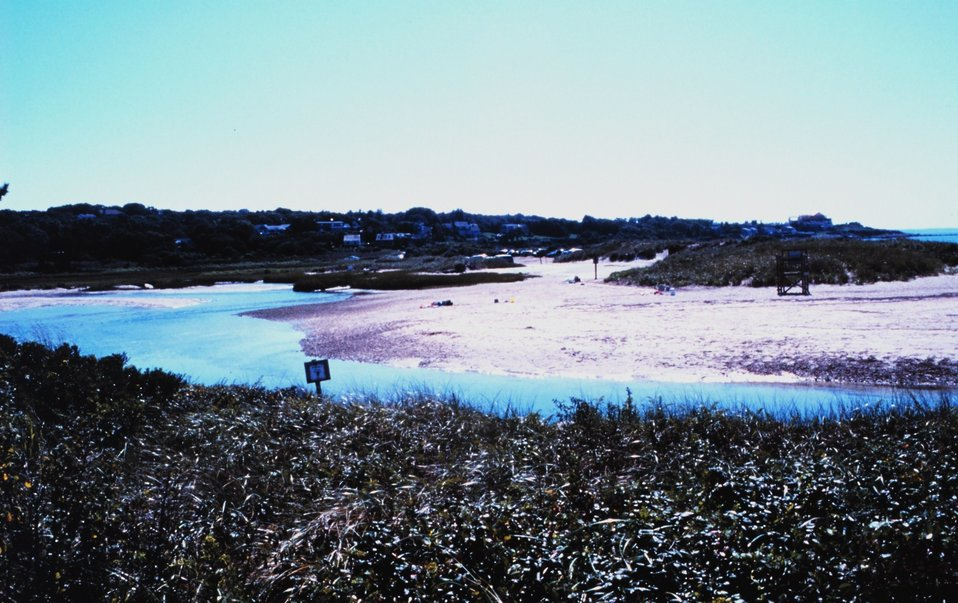 Woodneck Beach - Little Sippewissett Marsh, Falmouth