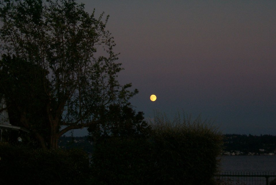 Moonrise over Tacoma as seen from Point Fosdick.