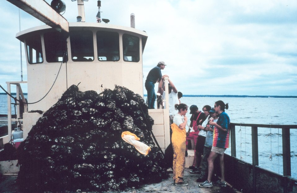 Volunteers assist the Oyster Recovery Partnership in their effort to transplant oyster spat before the population is decimated by the Stylochus flatworm. Hatchery bags are stacked aboard the ROBERT LEE.