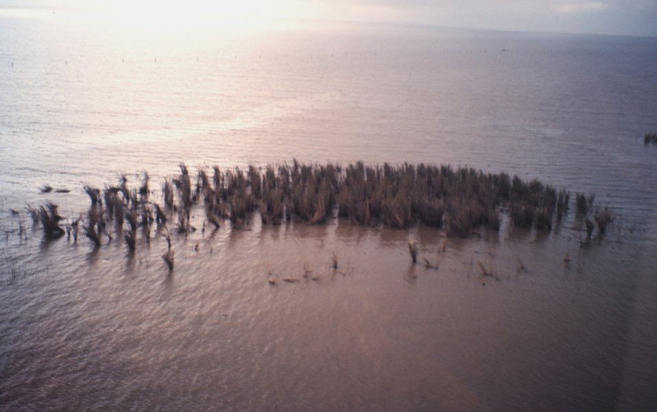 Aerial photo of eroding marsh and oil from recent well blowout