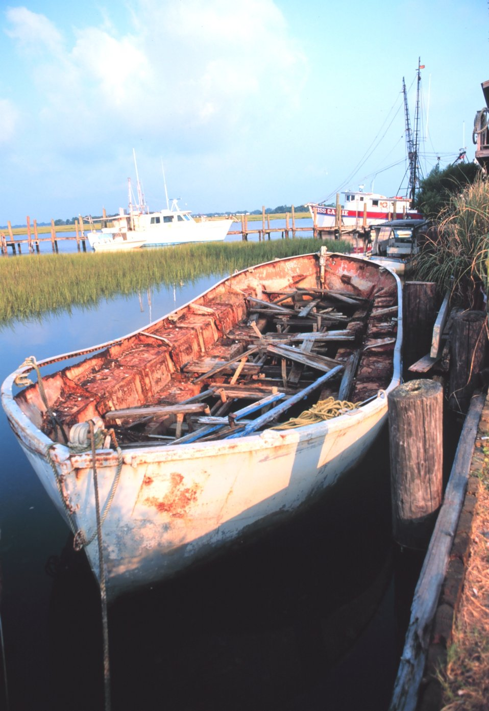 A derelict boat rotting away in the wetlands of Folly Island