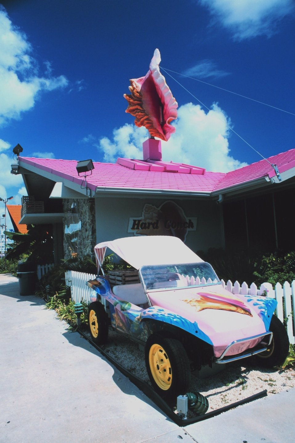 The 'Hard Conch' restaurant displays shell art