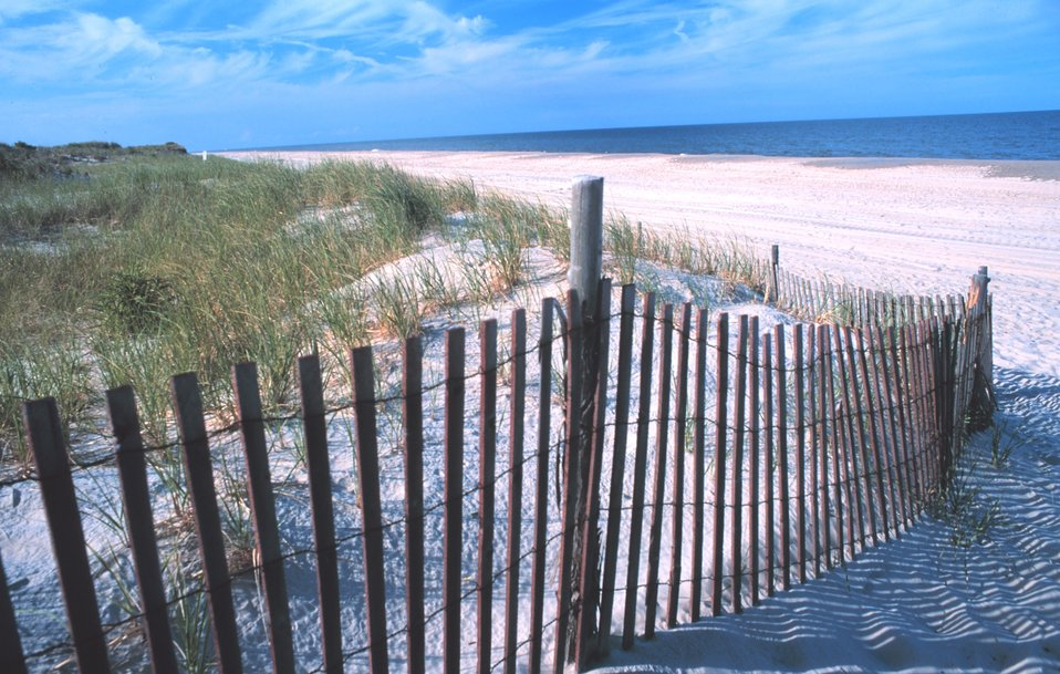 Looking from the dune line to the north at Delaware Seashore State Park