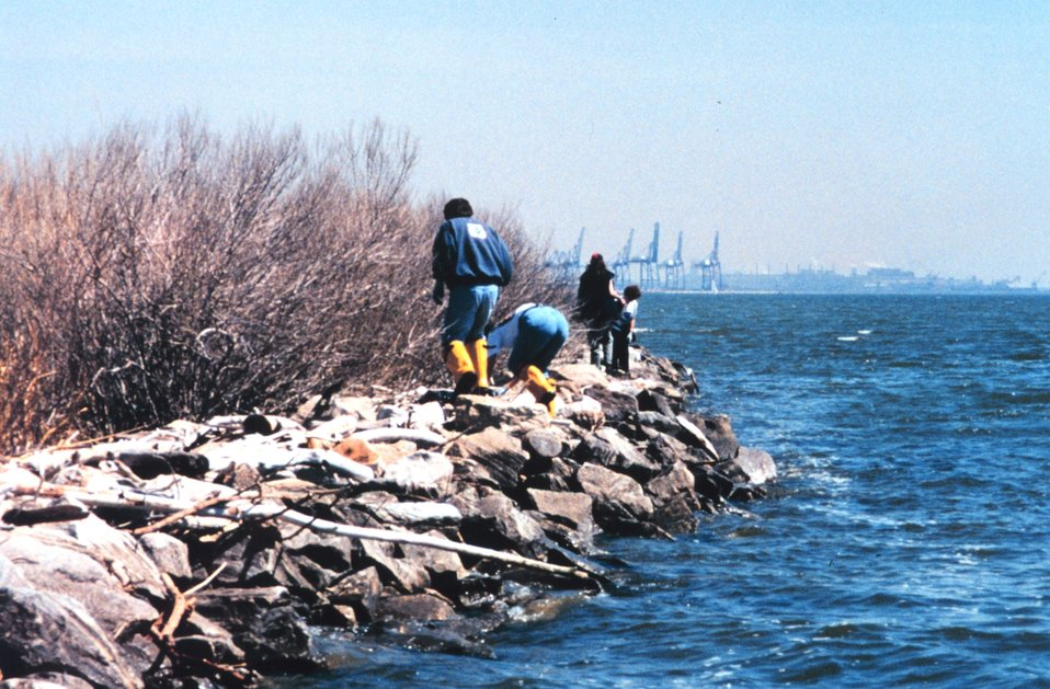 Volunteers helping clean up the wetlands and waterfront area around Fort McHenry  in Baltimore Harbor.  Here some are cleaning a rock riprap erosion mitigation structure.