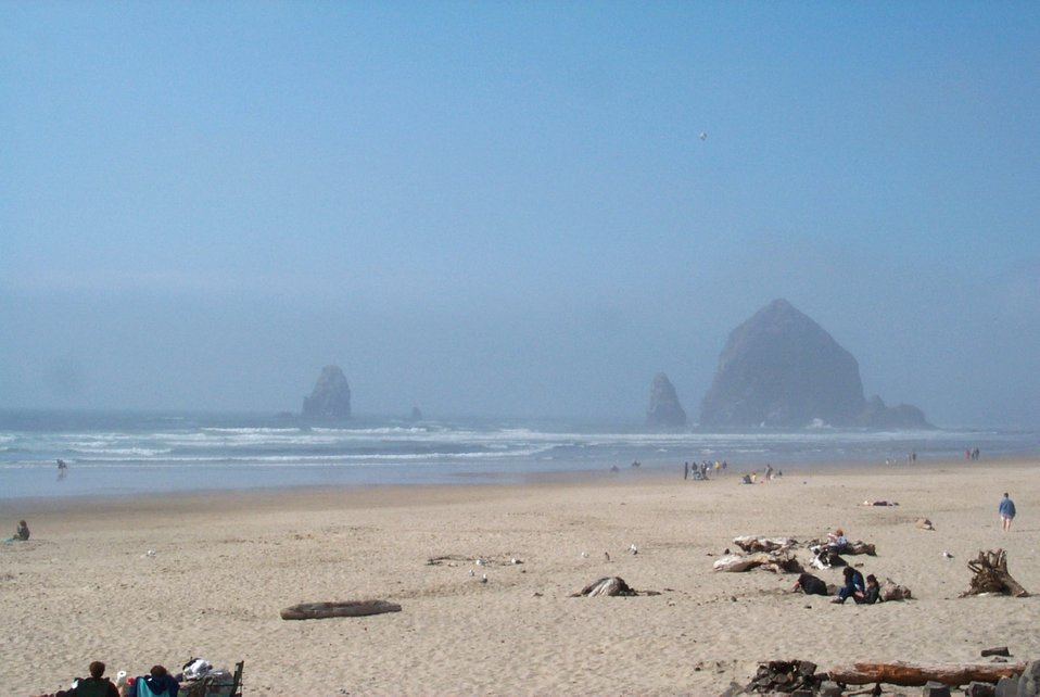 Haystack Rock at Cannon Beach on a misty day.
