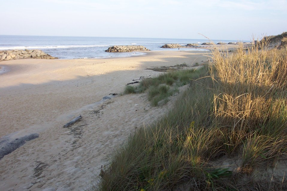 Rock barriers in the surf while erosion barriers are seen at the base of the dunes