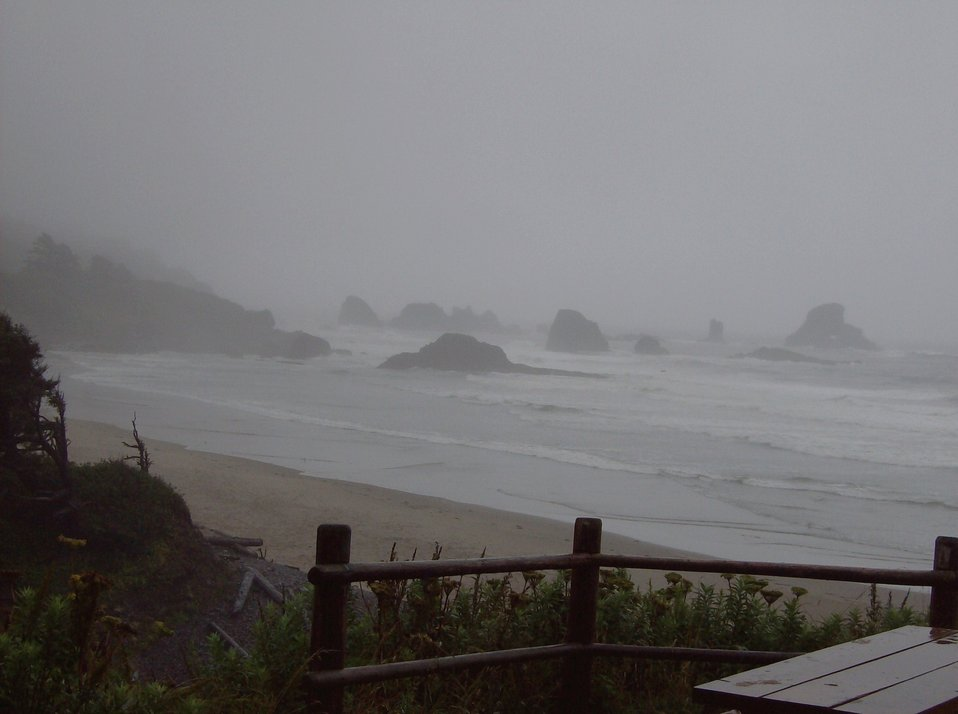 A lonely picnic table covered by mist and fog at Ecola State Park.