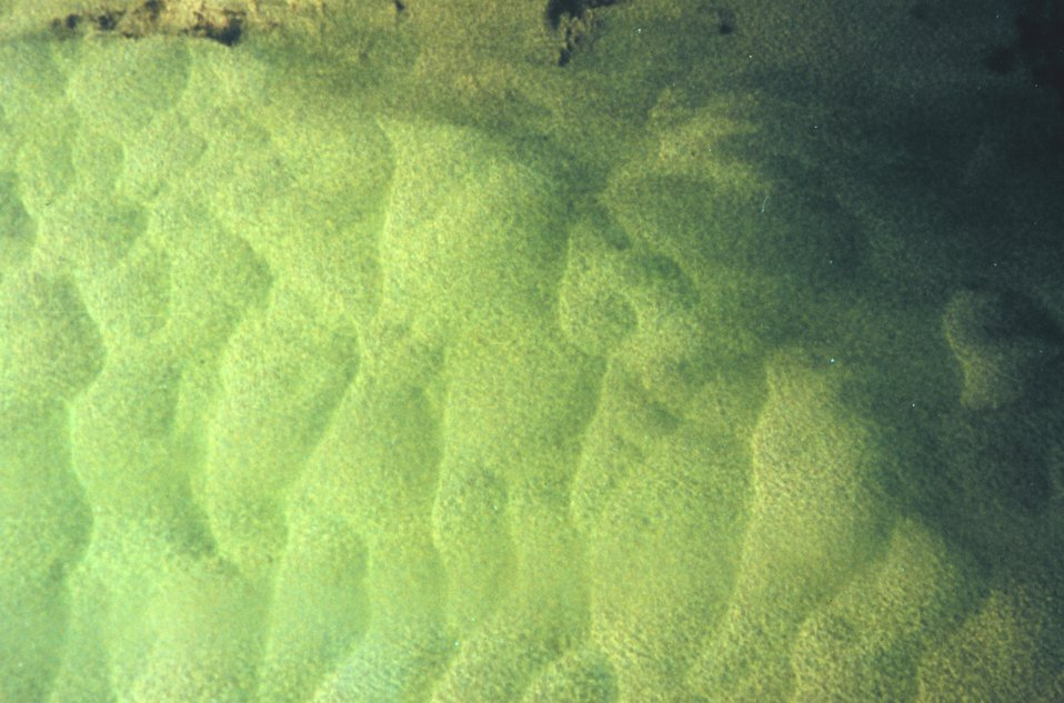 Giant sandwaves as seen from NOAA helicopter during SHOALS Lidar survey.