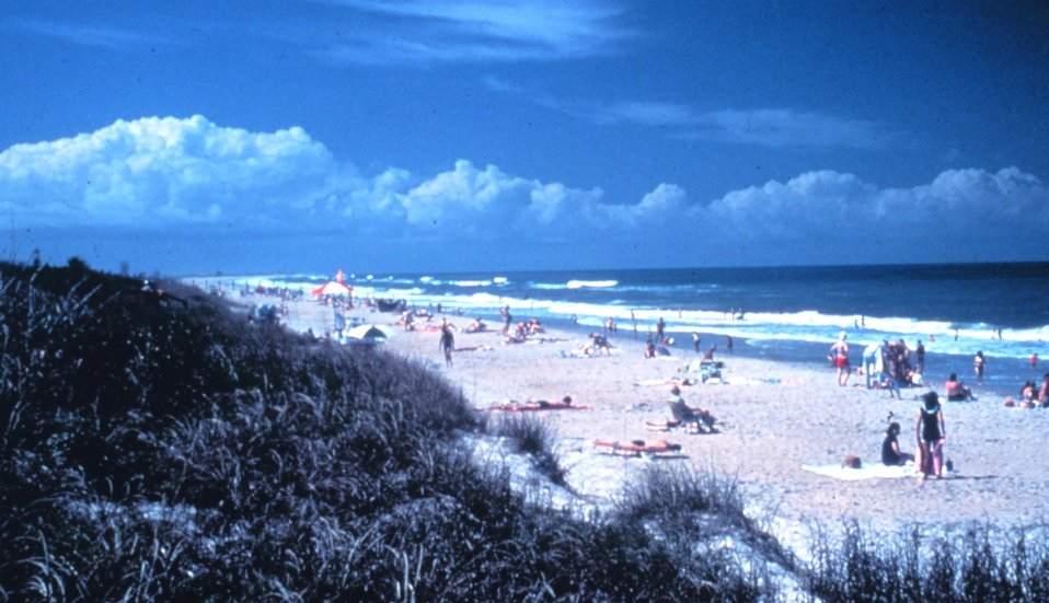 Canaveral National Seashore protects the cultural and natural resources within the park and provides recreational opportunities for park visitors.