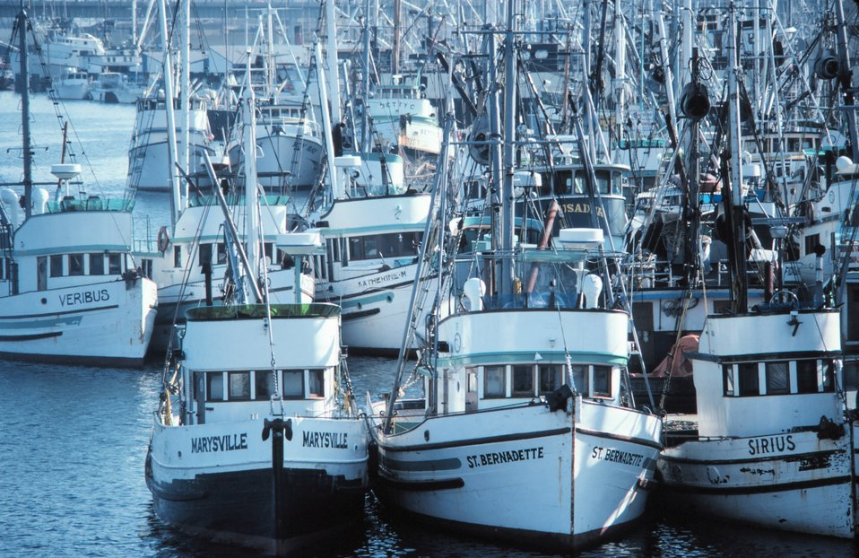 Fishing vessels tied up in Seattle