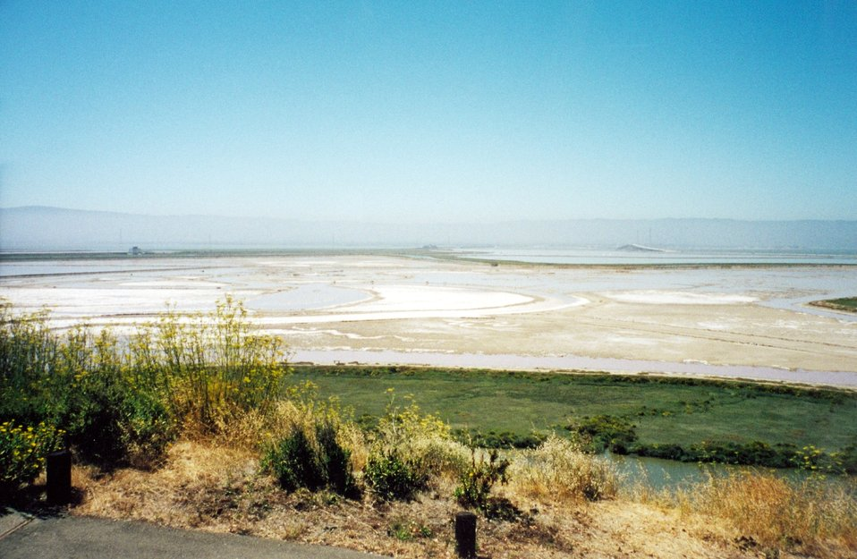 Salt flats at the south end of San Francisco Bay as seen from the Redwood City area.