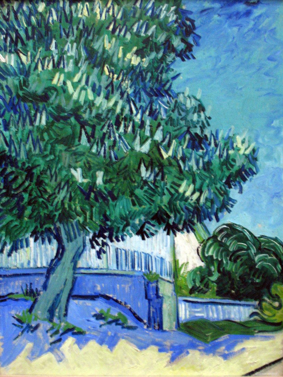 Blossoming chestnut trees Deutsch:  Blühende Kastanienbäume Nederlands:  Bloeiende kastanjebomen Русский:  Цветущие каштаны