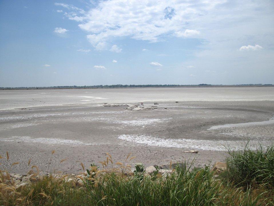 Big Salt Marsh,Quivira Refuge, Aug 2011