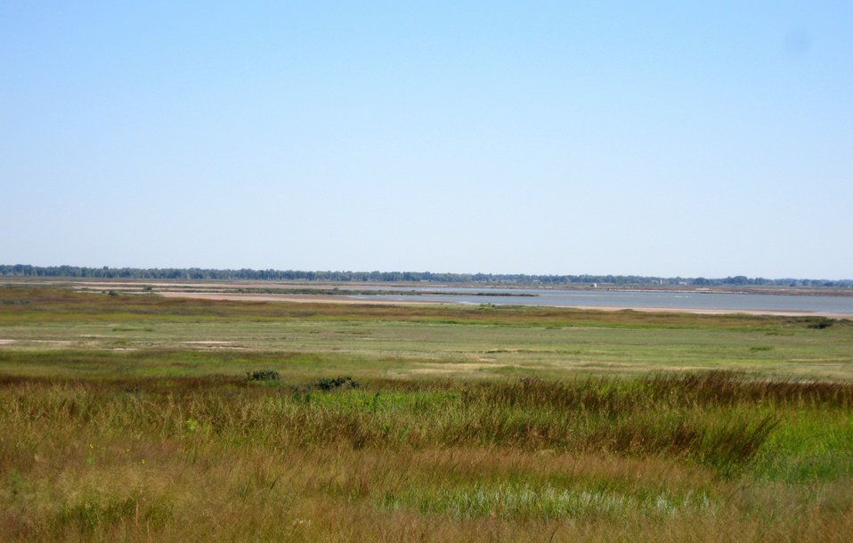 Big Salt Marsh, Quivira Refuge, Sept 2010
