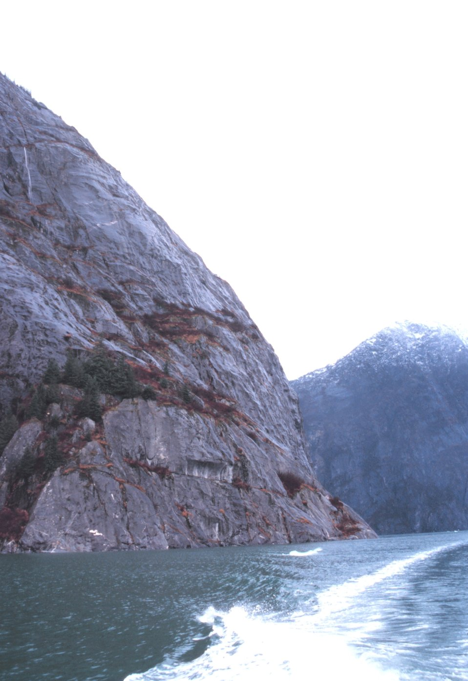 A wake disturbs the placid waters of Tracy Arm Fjord